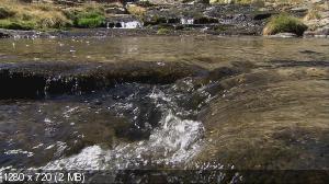 Водная жизнь / Water Life (2008) BDRip 1080p / 720p + HDRip