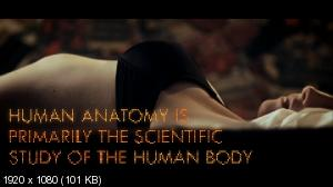 Sonata Arctica - Shitload of Money (2012) HDTV 1080p