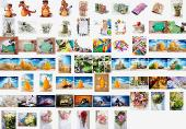 Shutterstock Mega Collection vol.5 - Misc