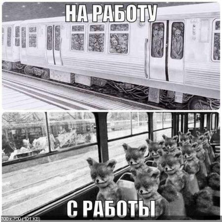 Прикольные иллюстрации от 19.01.2013