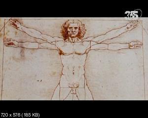BBC: Да Винчи. Утерянное сокровище / BBC: Da Vinci. The Lost Treasure (2011) SATRemux