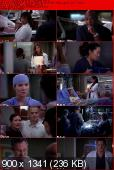 Greys Anatomy [S09E13] HDTV XviD-AFG