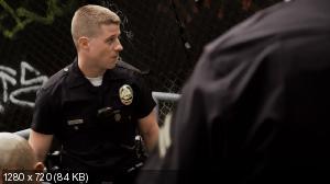 Южная Территория [5 сезон] / Southland (2013) WEB-DL 1080p / 720p + WEB-DLRip