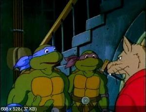 Черепашки ниндзя [7-й сезон] / Teenage Mutant Ninja Turtles (1993) DVDRip