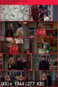 The Big Bang Theory [S06E19] HDTV XviD-AFG