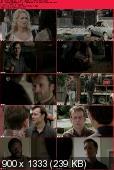 The Walking Dead [S03E14] HDTV.XviD-AFG