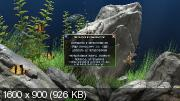 Dream Aquarium 1.2592 Screensaver - Repack