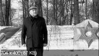 Ostland. Ночь под свастикой (2013) DVDRip