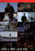 Down The Shore (2011) DVDRip.XVID.AC3-VoXHD